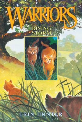 Image for Rising Storm (Warriors, Book 4)