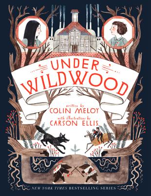 Under Wildwood (Wildwood Chronicles), Meloy, Colin
