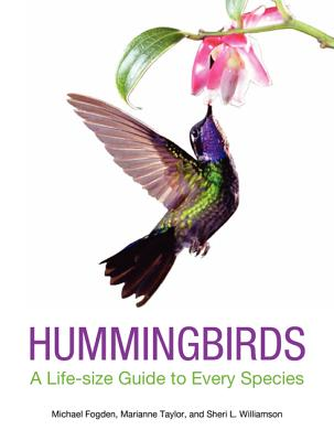 Image for HUMMINGBIRDS: A LIFE-SIZE GUIDE TO EVERY SPECIES
