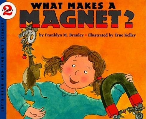 Image for What Makes a Magnet?