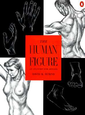Image for The Human Figure: An Anatomy for Artists