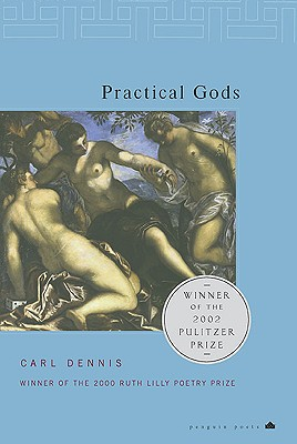 Image for Practical Gods