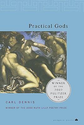 Image for Practical Gods (Penguin Poets)