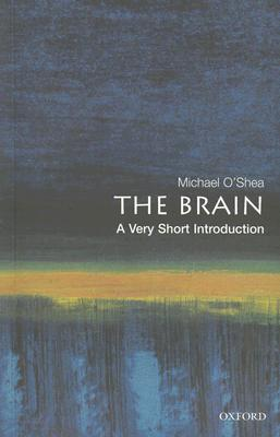 Image for Brain: A Very Short Introduction