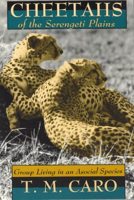 Image for Cheetahs of the Serengeti Plains: Group Living in an Asocial Species (Wildlife Behavior and Ecology series)