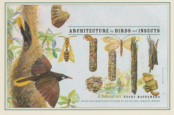 Image for Architecture by Birds and Insects: A Natural Art