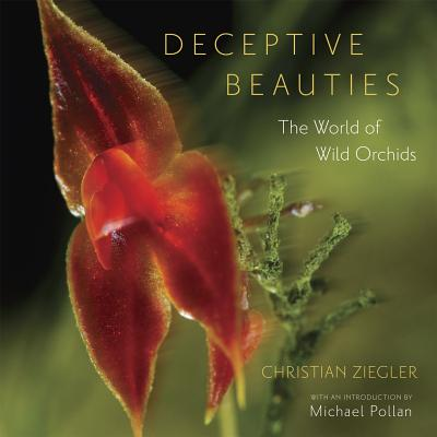 Image for Deceptive Beauties: The World of Wild Orchids