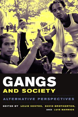 Image for Gangs and Society