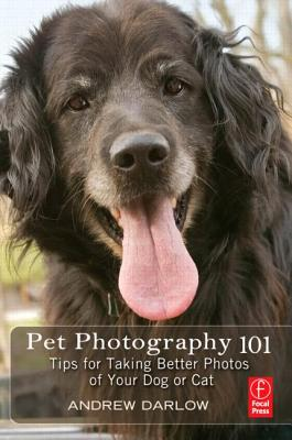 Image for Pet Photography 101: Tips for taking better photos of your dog or cat