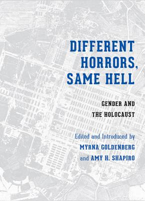 Image for Different Horrors, Same Hell: Gender and the Holocaust (Stephen S. Weinstein Series in Post-Holocaust Studies)