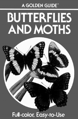 Butterflies and Moths: A Guide to the More Common American Species (Golden Guides), Mitchell, Robert T.; Zim, Herbert S.; Durenceau, Andre [Illustrator]