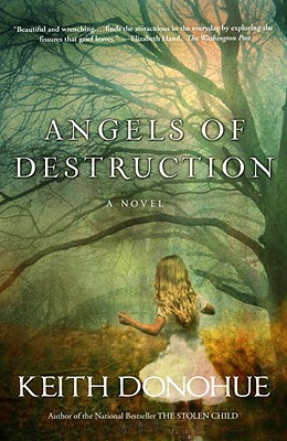 Angels of Destruction: A Novel, Donohue, Keith