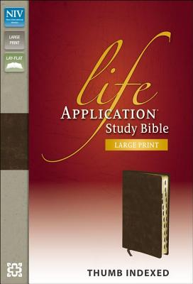 Image for NIV Life Application Large Print: Indexed (Distressed Brown)