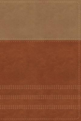 Image for NIV, Biblical Theology Study Bible, Leathersoft, Tan/Brown, Thumb Indexed, Comfort Print: Follow God's Redemptive Plan as It Unfolds throughout Scripture