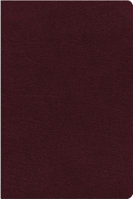 Image for NIV, Biblical Theology Study Bible, Bonded Leather, Burgundy, Indexed, Comfort Print: Follow God's Redemptive Plan as It Unfolds throughout Scripture
