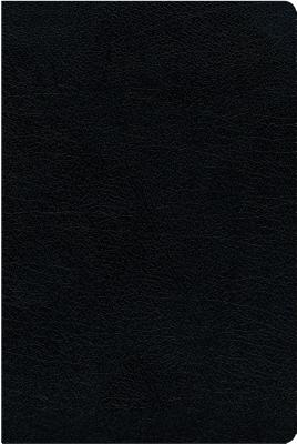 Image for NIV, Biblical Theology Study Bible, Bonded Leather, Black, Thumb Indexed, Comfort Print: Follow God's Redemptive Plan as It Unfolds throughout Scripture