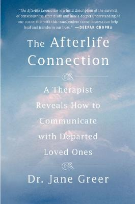 Image for The Afterlife Connection