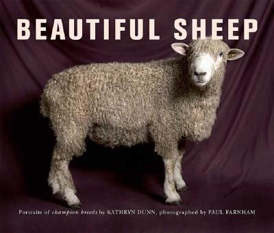 Image for Beautiful Sheep: Portraits of Champion Breeds