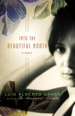 Image for Into the Beautiful North A Novel