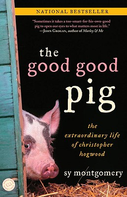 The Good Good Pig: The Extraordinary Life of Christopher Hogwood, Montgomery, Sy