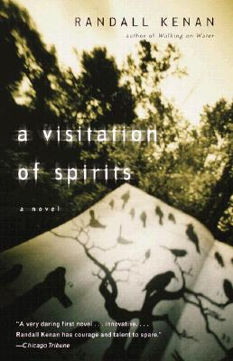 Image for A Visitation of Spirits: A Novel