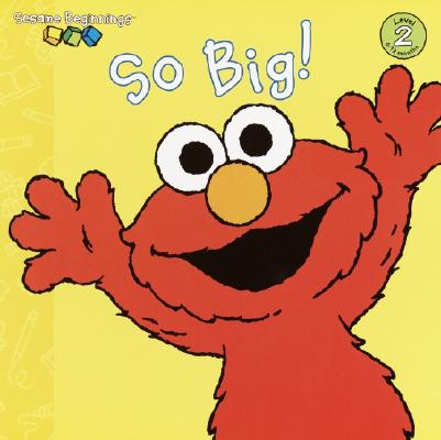 SO BIG! (SESAME STREET) (SESAME BEGINNINGS, LEVEL 2), HAYS, ANNA JANE