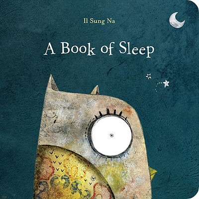 Image for A Book of Sleep