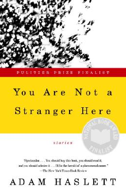 Image for You Are Not a Stranger Here: Stories