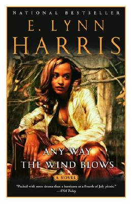 Image for Any Way the Wind Blows: A Novel (Basil and Yancy Series)