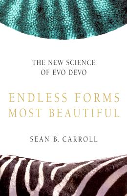 Image for Endless Forms Most Beautiful: The New Science of Evo Devo