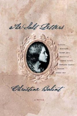 Image for The Salt Letters: A Novel