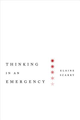 Thinking in an Emergency (Norton Global Ethics Series), Scarry, Elaine