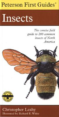 Image for Peterson First Guide to Insects of North America