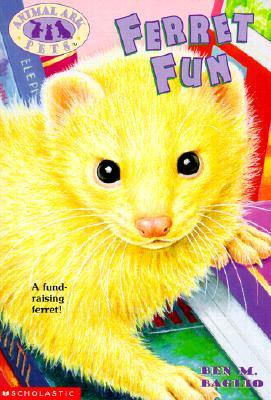 Image for Ferret Fun (Animal Ark Pets #17)