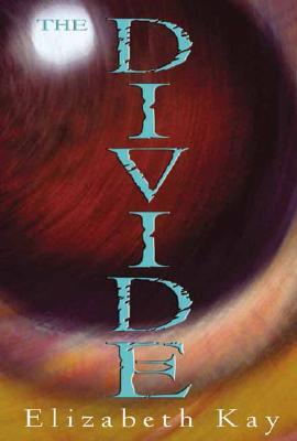 Image for Divide