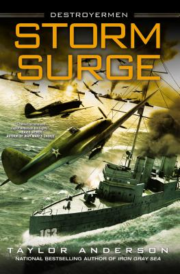 Image for Storm Surge (Destroyermen)