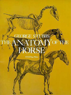 Image for The Anatomy of the Horse
