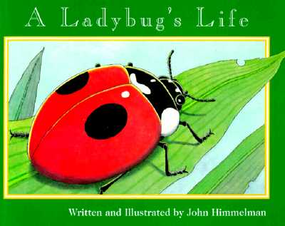 Image for A Ladybug's Life (Nature Upclose)