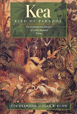 Image for Kea, Bird of Paradox: The Evolution and Behavior of a New Zealand Parrot