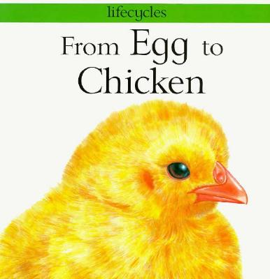 Image for From Egg to Chicken (Lifecycles)