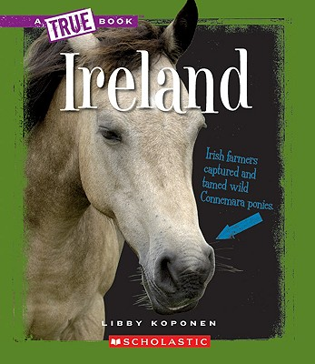 Image for Ireland (A True Book)
