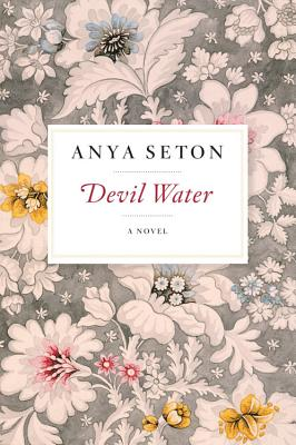 Image for Devil Water: A Novel