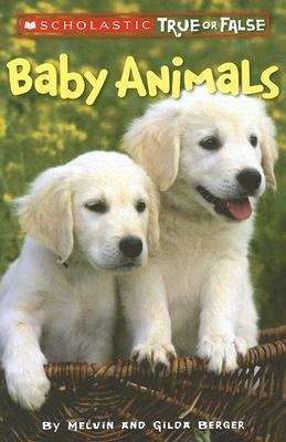 Image for Baby Animals (Scholastic True or False) (1)