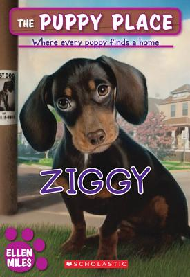 Image for The Puppy Place #21: Ziggy