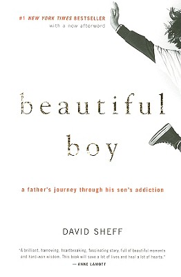 Image for Beautiful Boy: A Father's Journey Through His Son's Addiction