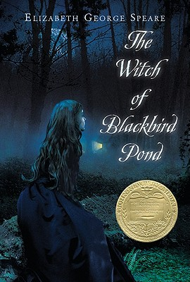 Image for The Witch of Blackbird Pond
