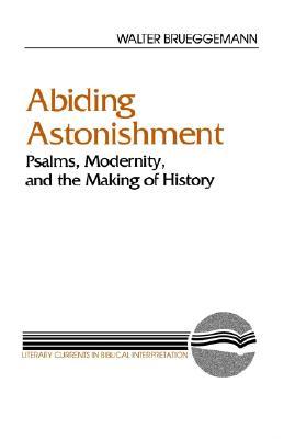Image for Abiding Astonishment (Literary Currents in Biblical Interpretation)