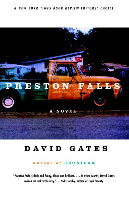 Image for Preston Falls: A Novel