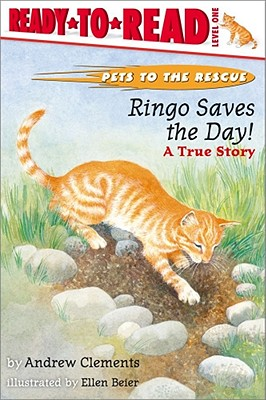 Image for Ringo Saves The Day! : A True Story