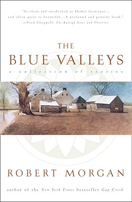 Image for The Blue Valleys: A Collection Of Stories